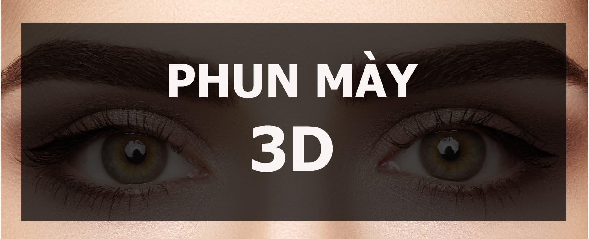 Phun may 3d la gi