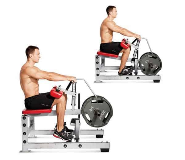 Bài tập cơ chân nâng bắp chân ngồi