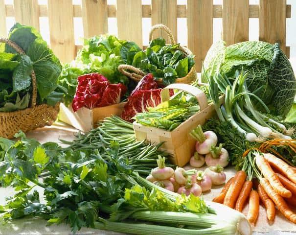 Thực phẩm ăn để luyện tập