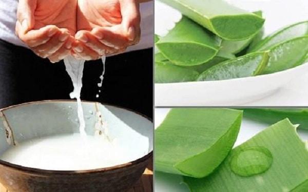Trị sẹo rỗ bằng nha đam và nước vo gạo