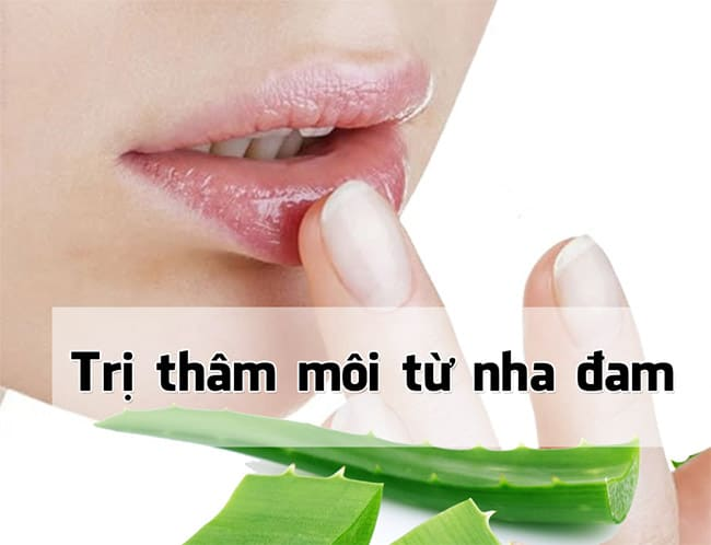 tri-tham-moi-bang-nha-dam