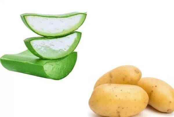 khoai tây với nha đam